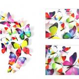 Set de 12 fluturi 3D sticker curcube