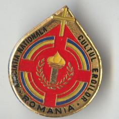 ASOCIATIA NATIONALA CULTUL EROILOR - ROMANIA  -  Insigna SUPERBA