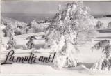 Bnk cp Iarna pe muntele Semenic - Vedere - circulata, Printata