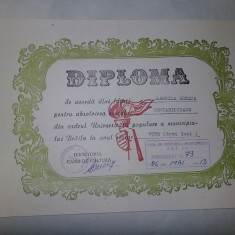 Document/act vintage 1996,DIPLOMA-Contabilitate,Casa de cultura Braila