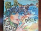 Lumea intr-un degetar- Lucia Olteanu
