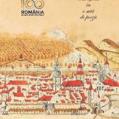 Brasovul in o suta de poezii - Nicolae Stoie