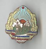 STEMA EMAIL Republica Socialista Romania  1970 -  Insigna SUPERBA