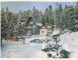 bnk cp Sinaia - Vila Albina - uzata