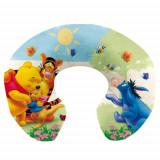 Pernuta Gat pentru calatorie Winnie Pooh