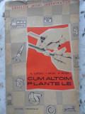 CUM ALTOIM PLANTELE - FL. LUPESCU, I. MILITIU, A. MILITIU, Alexei Tolstoi