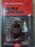 OMUL DE LA CAPATUL FIRULUI - RODICA OJOG-BRASOVEANU
