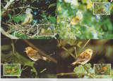 Cook Islands 1989 - pasari, serie maxima
