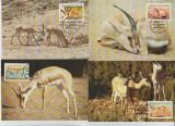 Libia 1987 - gazelle, serie maxima