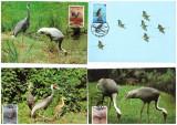 Korea Sud 1988 - Fauna WWF, pasari, serie maxime
