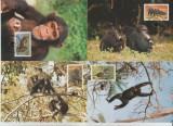 Sierra Leone 1983 - cimpanzi, serie maxima