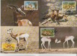 Senegal 1986 - gazelle, serie maxima