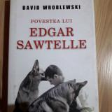 David Wroblewski - Povestea lui Edgar Sawtelle, Rao, 2010