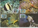 Maldives 1986 - pesti, serie maxima