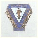 Insigna UCFS, campion Regional Oltenia albastru