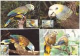 St Vincent 1989 - Pasari, fauna WWF, serie maxime