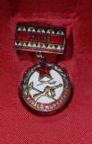 Insigna Ungaria - fruntas, Gata pt Aparare, cu miniatura, in etu