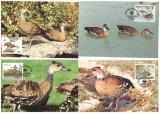 Bahamas 1988 - Fauna WWF, serie maxime