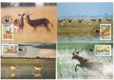 Zambia 1987 - Fauna WWF, serie maxime