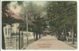 Valcele(Covasna) 1910 - izvorul nou