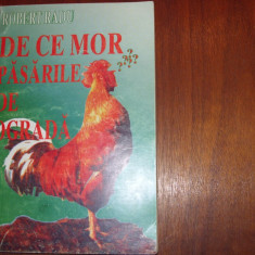 DE CE MOR PASARILE DE OGRADA ?  BOLI, TRATAMENTE, PROFILAXIE  ( carte rara ) *