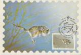 Rusia 1985 - Fauna, maxima
