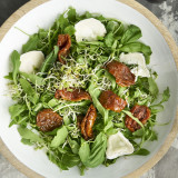 Seminte de Rucola - leguma - 10 seminte pt semanat