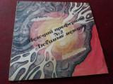 DISC  VINIL   MUZICA URSS