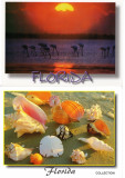 Set 10 carti postale Florida SUA, Necirculata, Printata