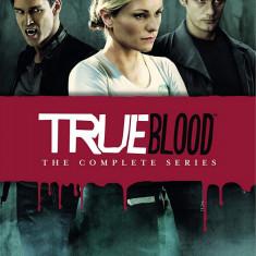 Film Serial True Blood - Complete Season 1-7 [DVD] Box Set