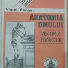 RWX 81 - ANATOMIA OMULUI - VISCERELE TORACELUI - VIOREL RANGA
