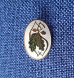 Insigna interbelica Silvicultura - Forestiera - regalista - P1