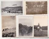bnk foto - Muntii Bucegi - lot 5 fotografii anii `50