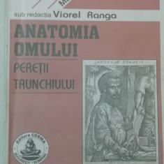 RWX 81 - ANATOMIA OMULUI - PERETII TRUNCHIULUI - VIOREL RANGA