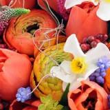 Curs Florar Decorator