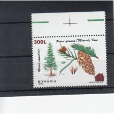 ROMANIA  2000  LP 1526  FLORA  96  SUPRATIPAR CABANA   MNH