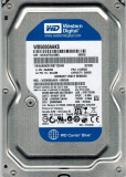 Hard Disk 500GB, Western Digital Caviar Blue 16Mb cache, 7200rot/min, SATA 3Gb/s, 500-999 GB, 7200, SATA2, Western Digital