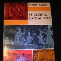 VULTURUL CANTACUZIN-NECULAI SANDRU-