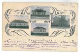 3890 - SALONTA, Bihor, Romania, Litho - old postcard - used - 1916, Circulata, Printata