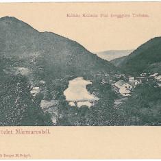 3989 - SIGHET, Maramures, Romania - old postcard - unused, Necirculata, Printata