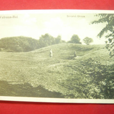 Ilustrata Vulcana-Bai -Izvorul Oveza judet Dambovita 1933