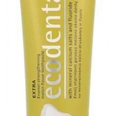 Toothpaste Ecodenta Toothpaste U 100ML