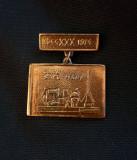 Insigna 1974 - Monumentul eroilor din Carei - Satu - Mare