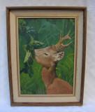 Pictura frumoasa infatisand un caprior semnata Iris Sandberg, Animale, Ulei, Realism