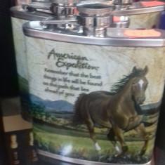 Plosca whisky sticluta retro pentru whisky