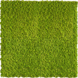 Gradini verticale licheni conservati ARTFLORA GreenLime 0.25mp