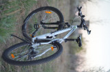 "Bicicleta Kilimanjaro 29"""