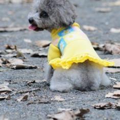 Pulover rochita tricotata - Dolly - 7237 (MARIME: 40 cm)