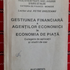 GESTIUNEA FINANCIARA A AGENTILOR ECONOMICI IN ECONOMIA DE PIATA