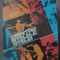 PRINTRE STELELE STELEI - OCTAVIAN VINTILA